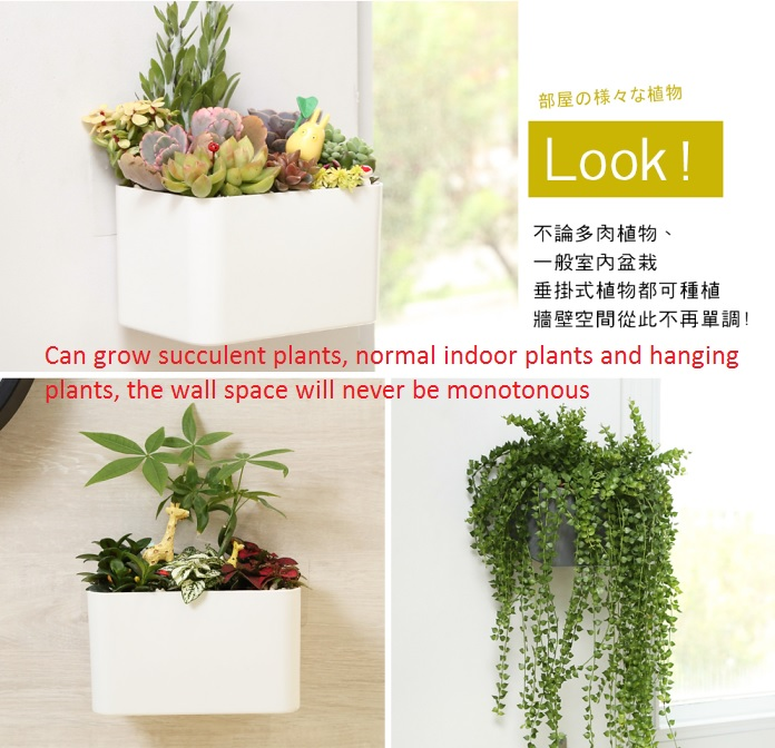 4.Indoor plant pot.jpg